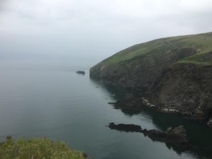 Further around Dinas Head