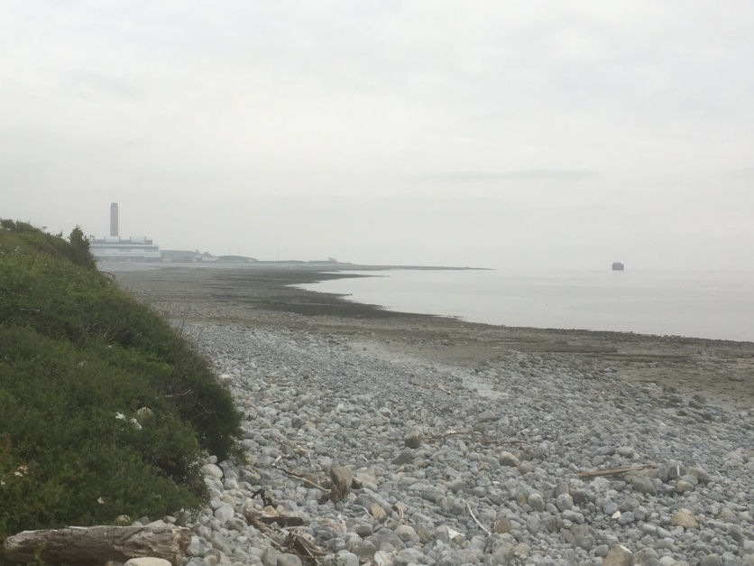 Aberthaw power station in the distance