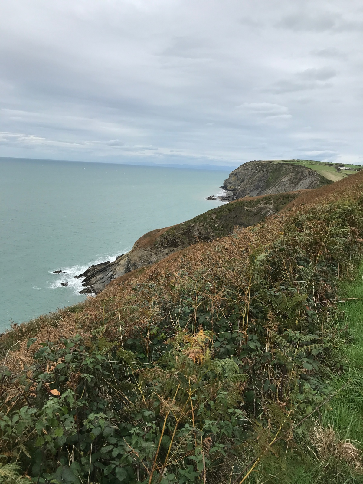 Aberporth to New Quay